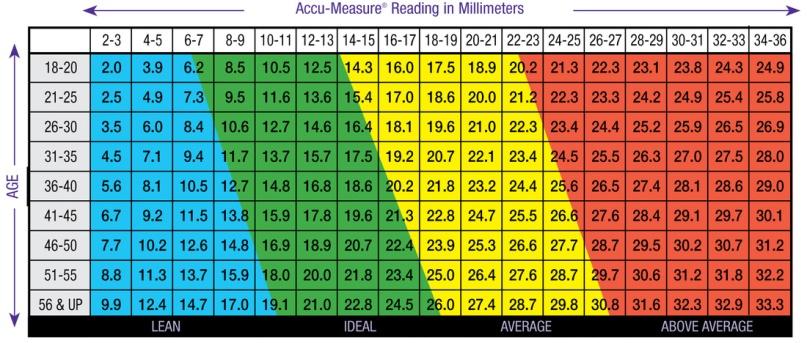 body fat percentage chart men