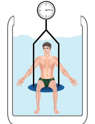 Hydrostatic Weighing body fat